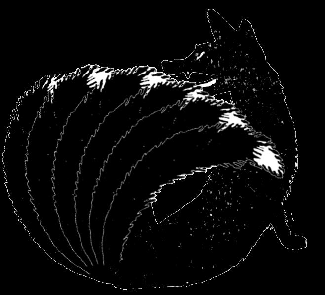 fox6.png