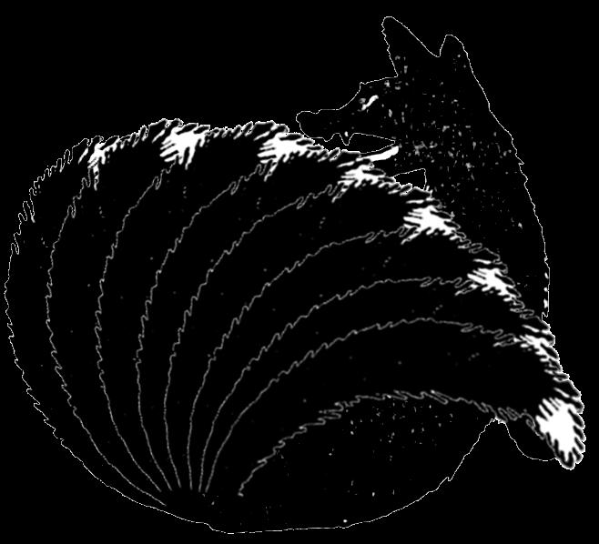 fox8.png