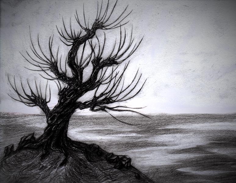 tree7.jpg