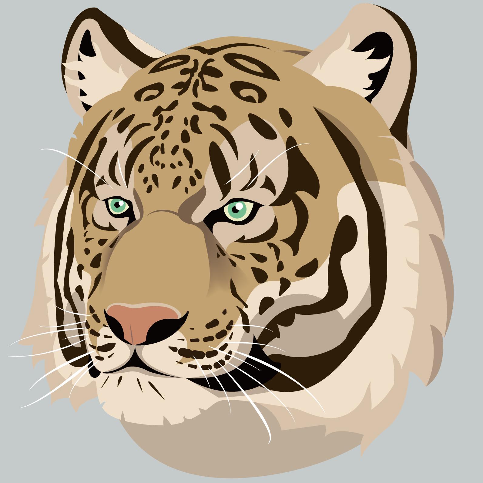 amur_leopard_tiger.png